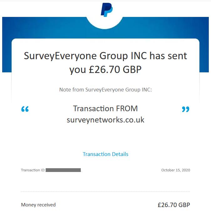 survey network uk payment account screenshot